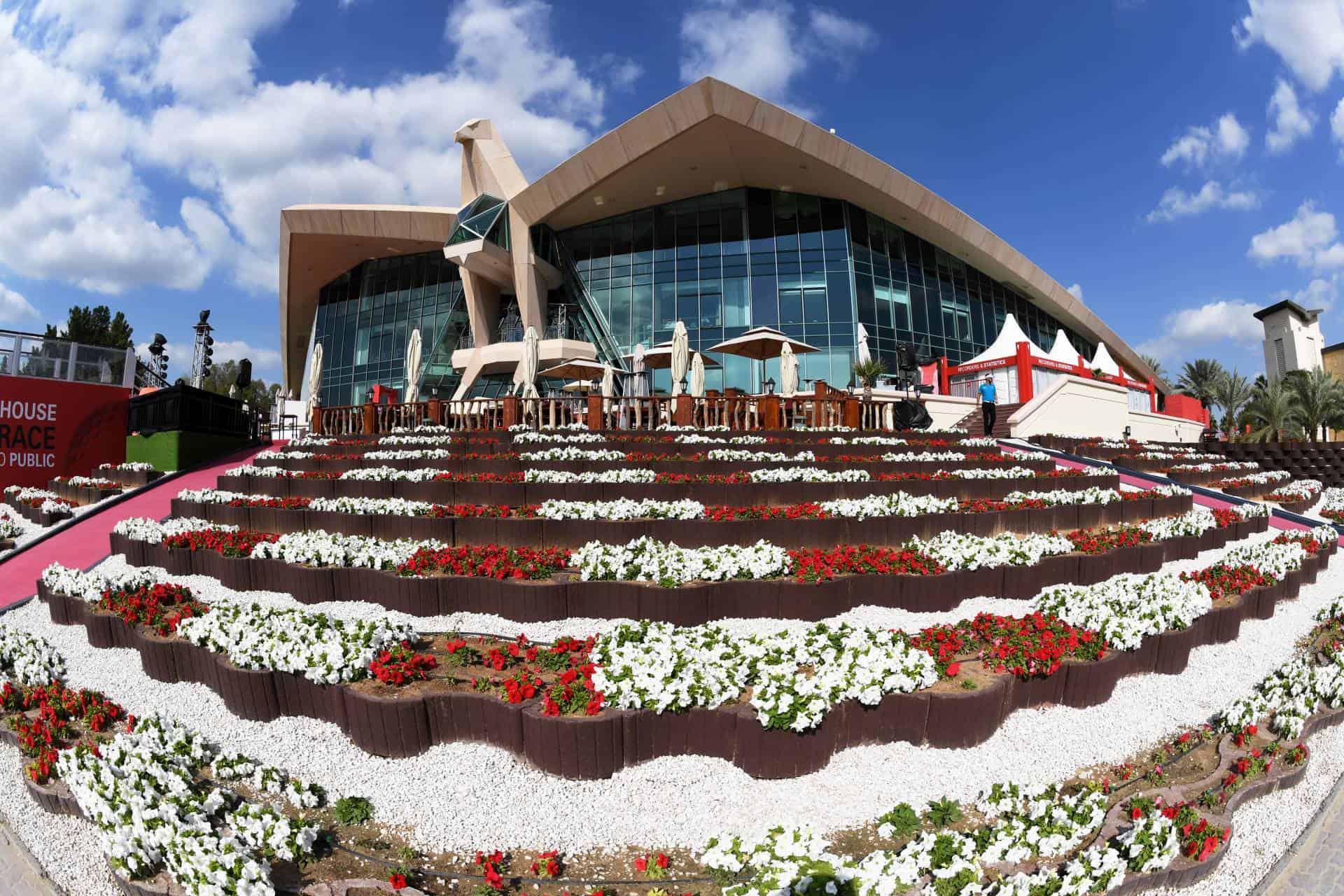 Pin on Saadiyat Beach Golf Club, Abu Dhabi